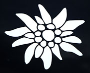 Edelweiss Vinyl Window Decal